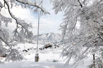 鳥取県智頭町 大雪